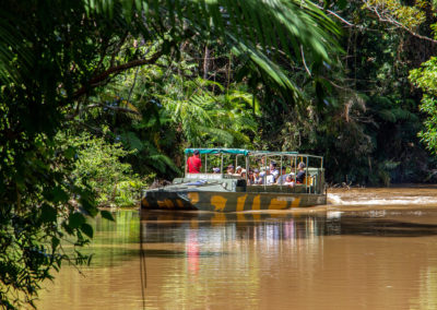 Army Duck Rainforest Tour