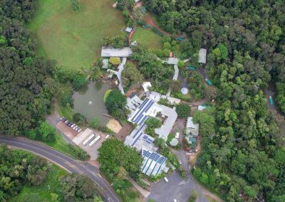 Aerial of Rainforestation