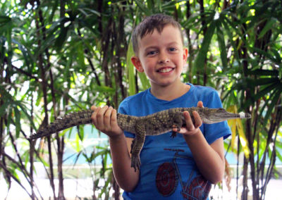 Crocodile Holding Photo