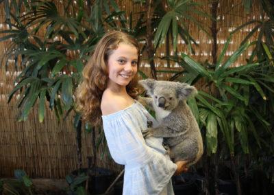 Koala Holding Photo