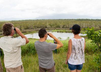 eubenangee-wetlands