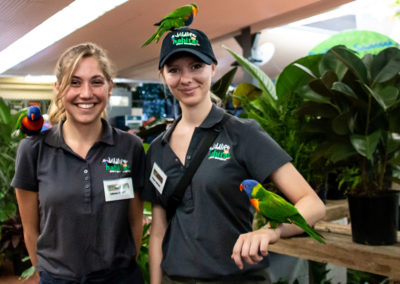 Lunch-With-The-Lorikeets-Volunteers