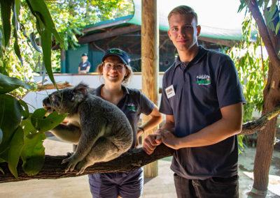Volunteers-with-Koala