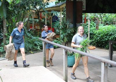 Wildlife-Habitat-Volunteer-Feeding-Duties