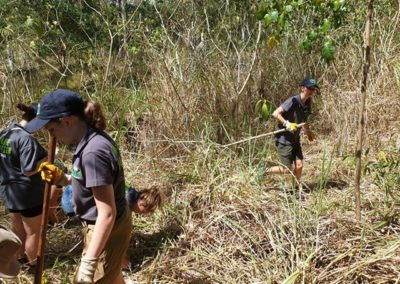 Wildlife Habitat Volunteer Program
