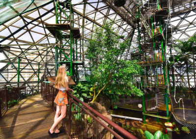 cairns-zoom-and-wildlife-dome-interior