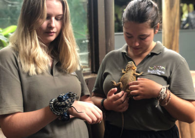 volunteers-with-reptiles-rainforestation-nature-park